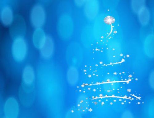 !!Feliz Navidad y venturoso año 2014¡¡